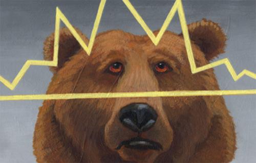 wyckoff-bear
